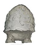 "NPC 8: STOOL (aka ""TimTum"") - A childlike Mychonid Sprout."